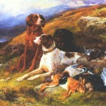pointer and setter