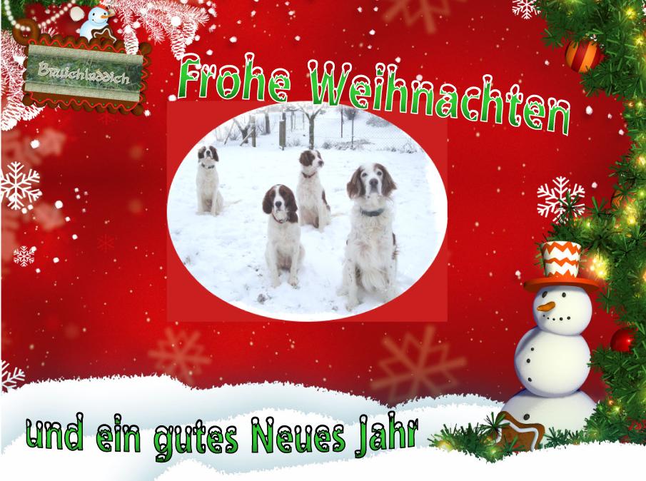 Weihnachtskarte 2009