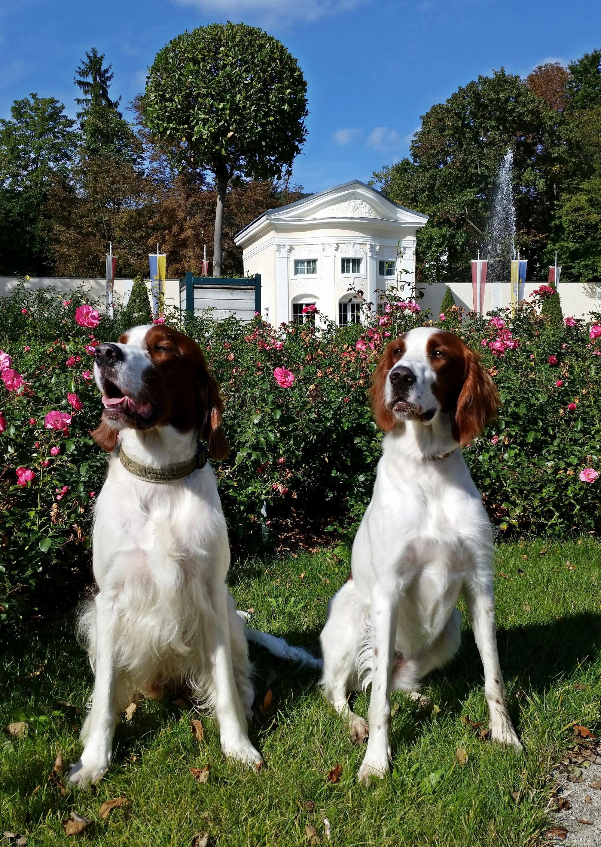 Baylee & Chelsea