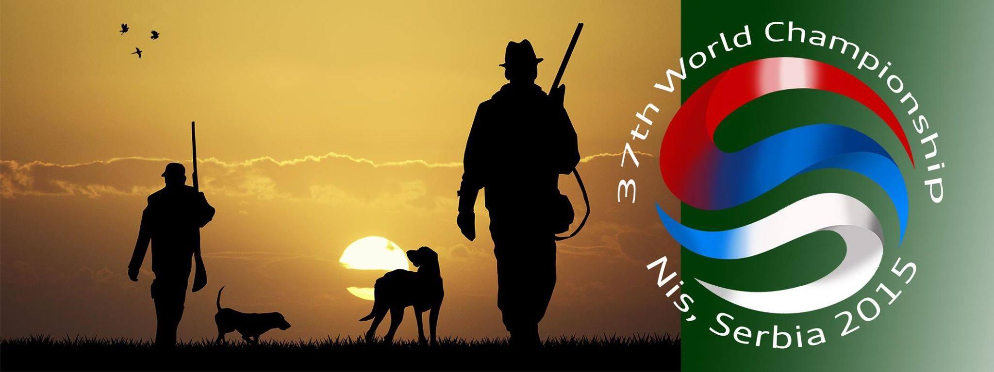 Brinkley als erster Irish Red & White Setter bei der WM der Vorstehhunde!