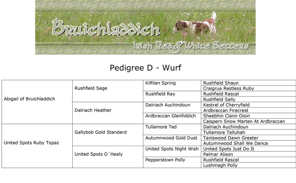 Pedigree D-Wurf_k