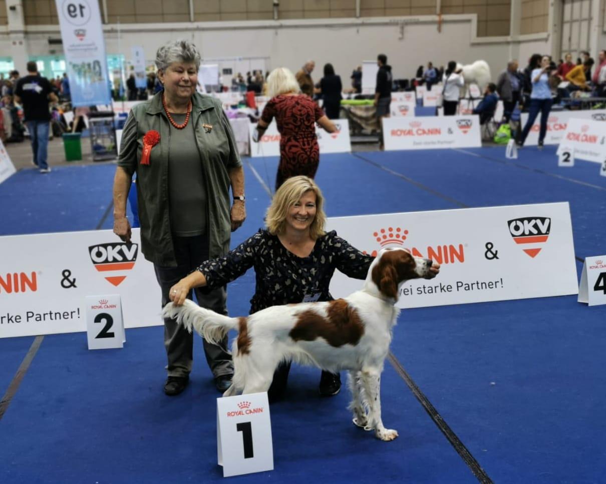 Ria's erste Hundeausstellung in Tulln